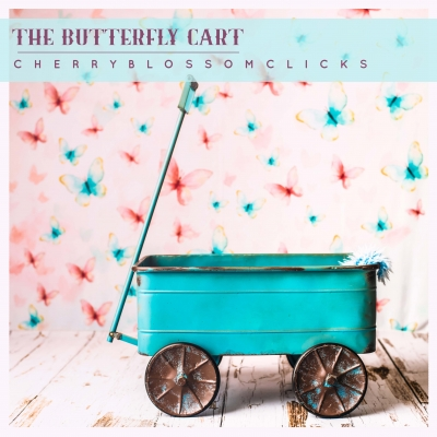 THE BUTTERFLY CART