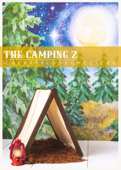THE CAMPING 2